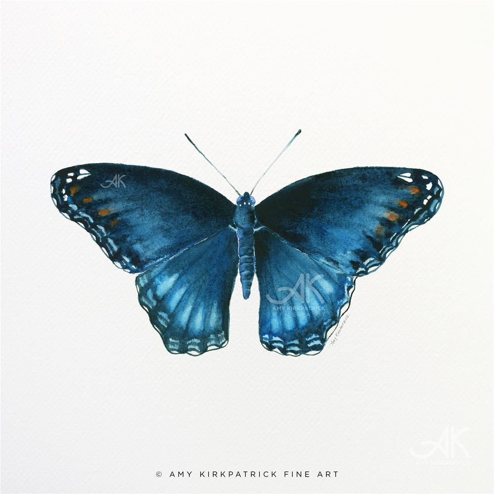 """""""113 Brenton Blue Butterflyl #0592"""" original fine art by Amy Kirkpatrick"""