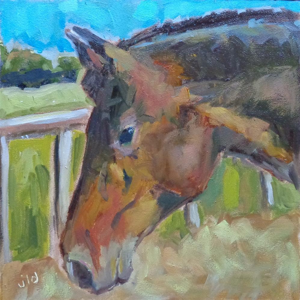 """""""DILLON"""" original fine art by Jean Delaney"""