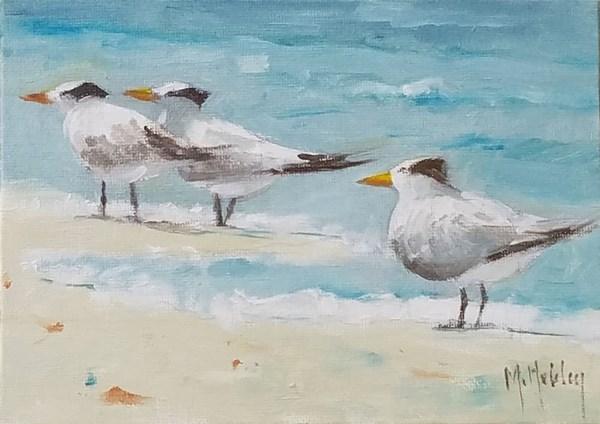 """Surfline Terns"" original fine art by Mary Hubley"