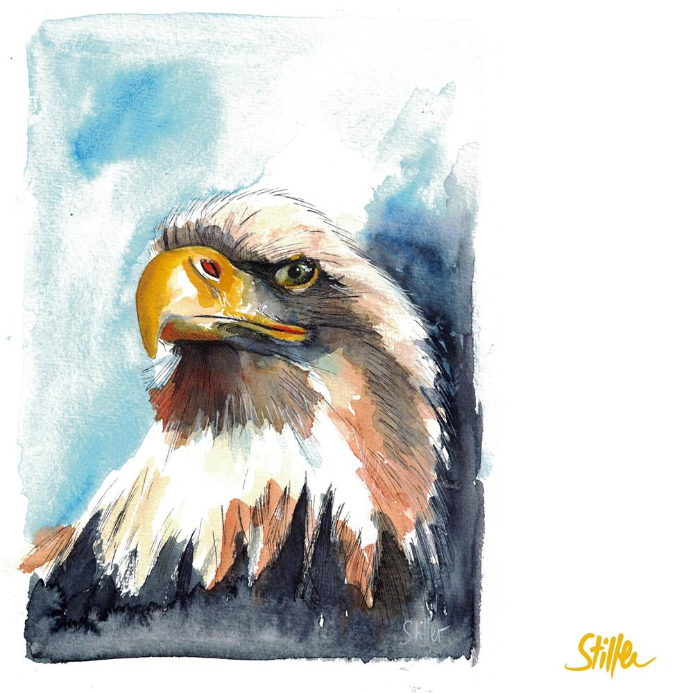 """3602 Mr. Eaglehead"" original fine art by Dietmar Stiller"