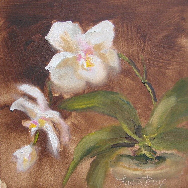 """""""Dorothy's Orchid - 394"""" original fine art by Laura  Buxo"""