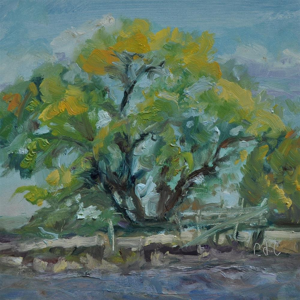 """Ditch Bank View"" original fine art by Catherine Crookston"