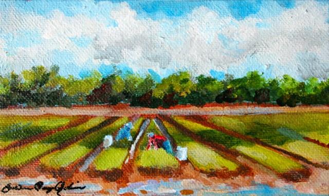 """Neat Rows in a Row"" original fine art by JoAnne Perez Robinson"