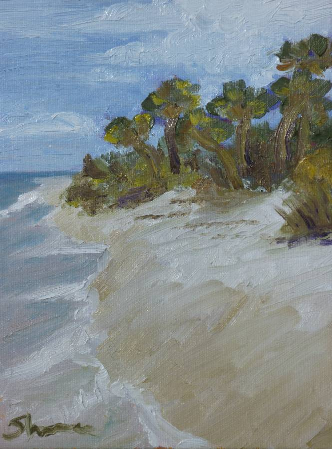 """Lost Beach"" original fine art by Shawn Deitch"