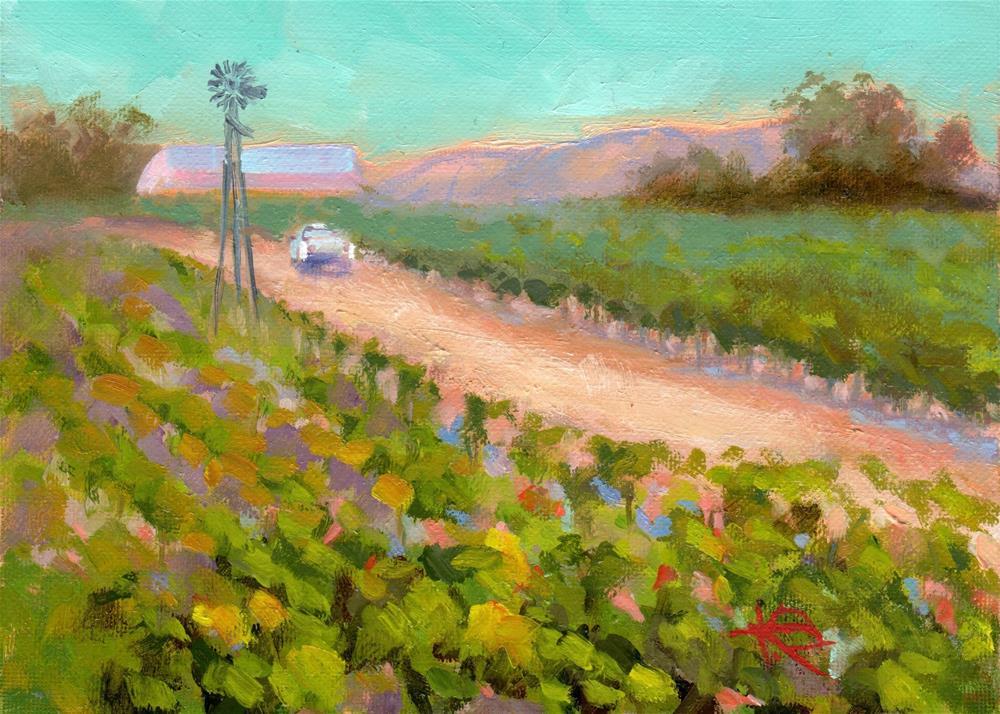 """Paso Robles Harvest"" original fine art by Kathy Bodamer"
