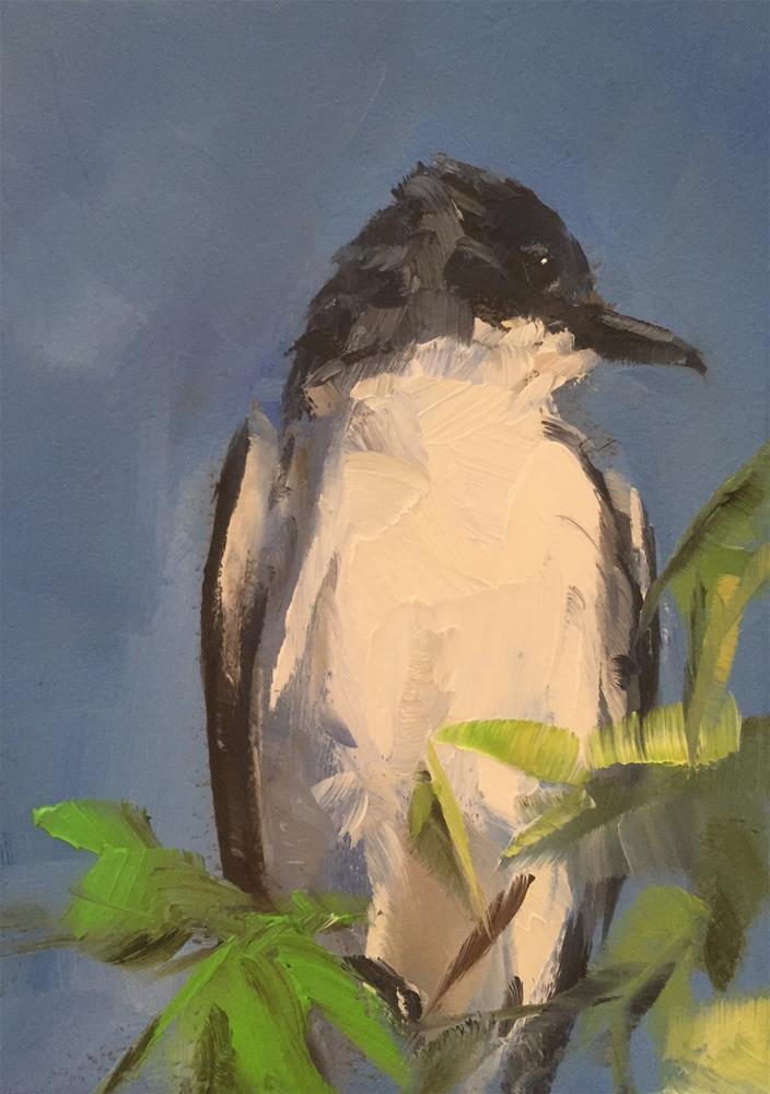 """Kingbird Portrait"" original fine art by Gary Bruton"