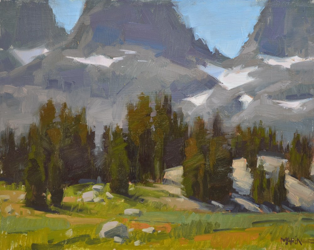 """Trees Galore"" original fine art by Carol Marine"