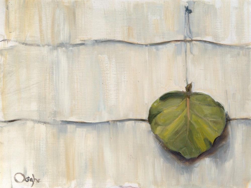 """""""Leaf on Asbestos Siding"""" original fine art by Angela Ooghe"""