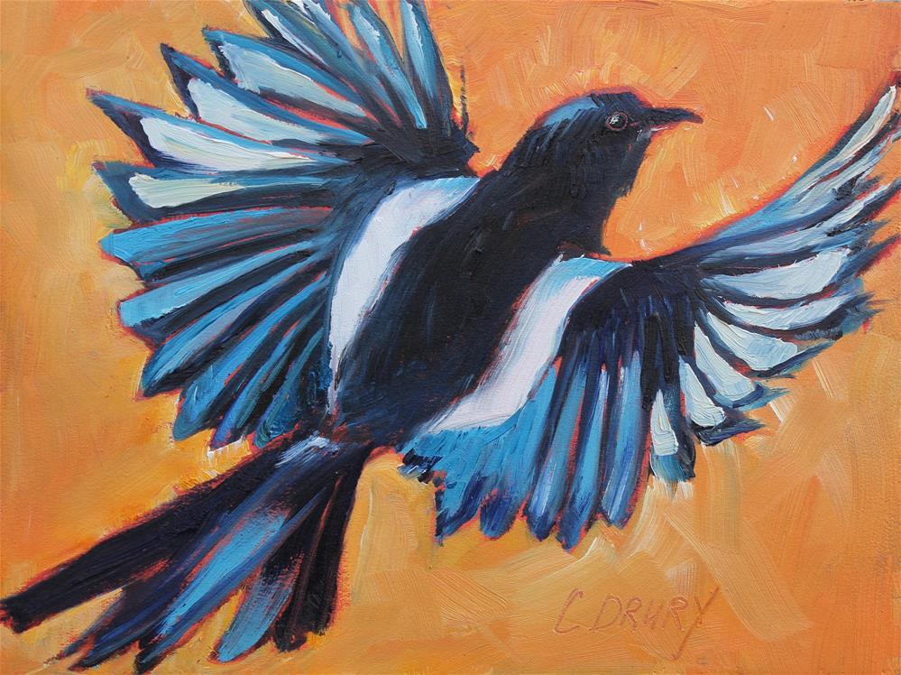 """""""Magpie Taking Flight"""" original fine art by Colleen Drury"""