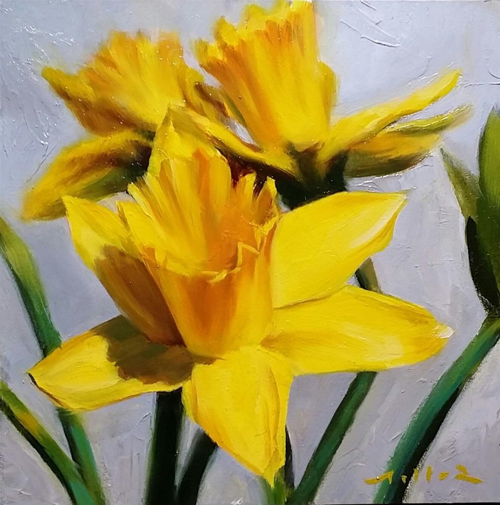 """Daffodil Study #1"" original fine art by Nathan Miller"