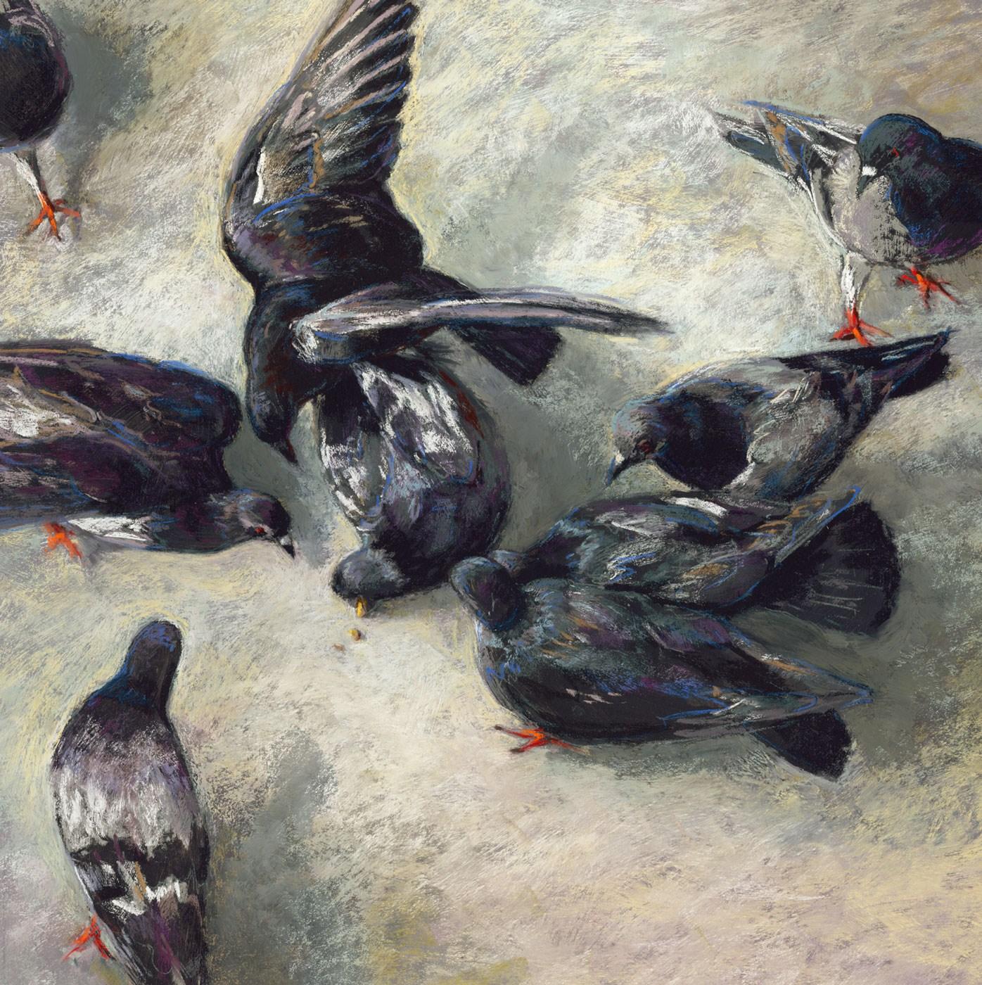 """""""Pigeon Fight"""" original fine art by Rita Kirkman"""