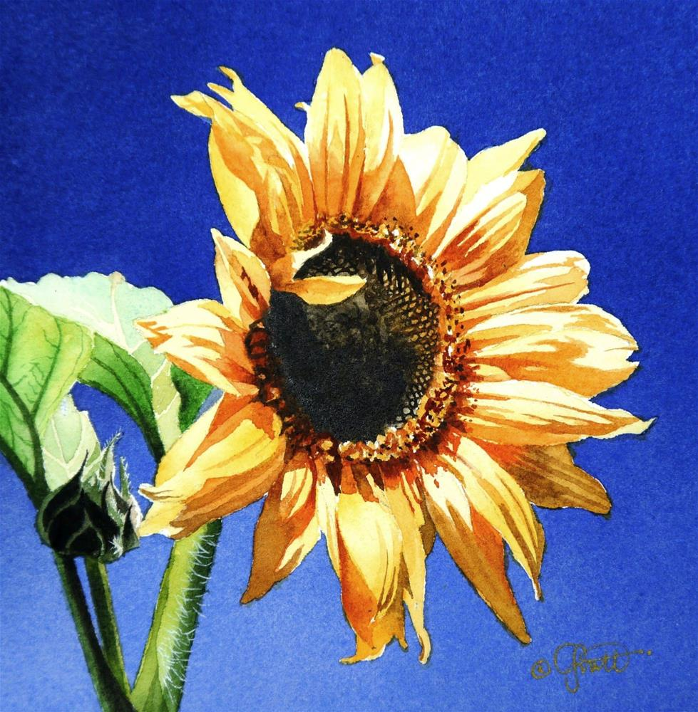 """Sunflower, New Watercolor & New Video"" original fine art by Jacqueline Gnott, TWSA, WHS"