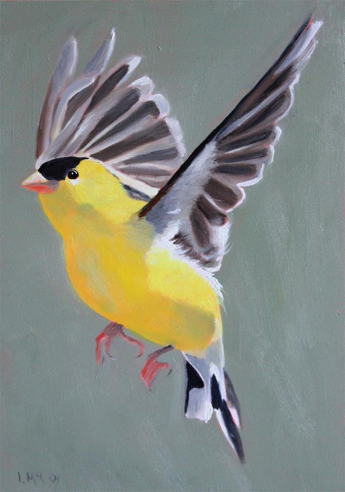 """""""Young at Heart, Finch in Flight"""" original fine art by Linda McCoy"""