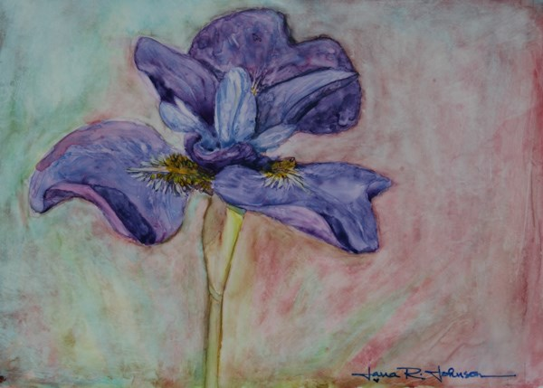"""Upright Iris"" original fine art by Jana Johnson"