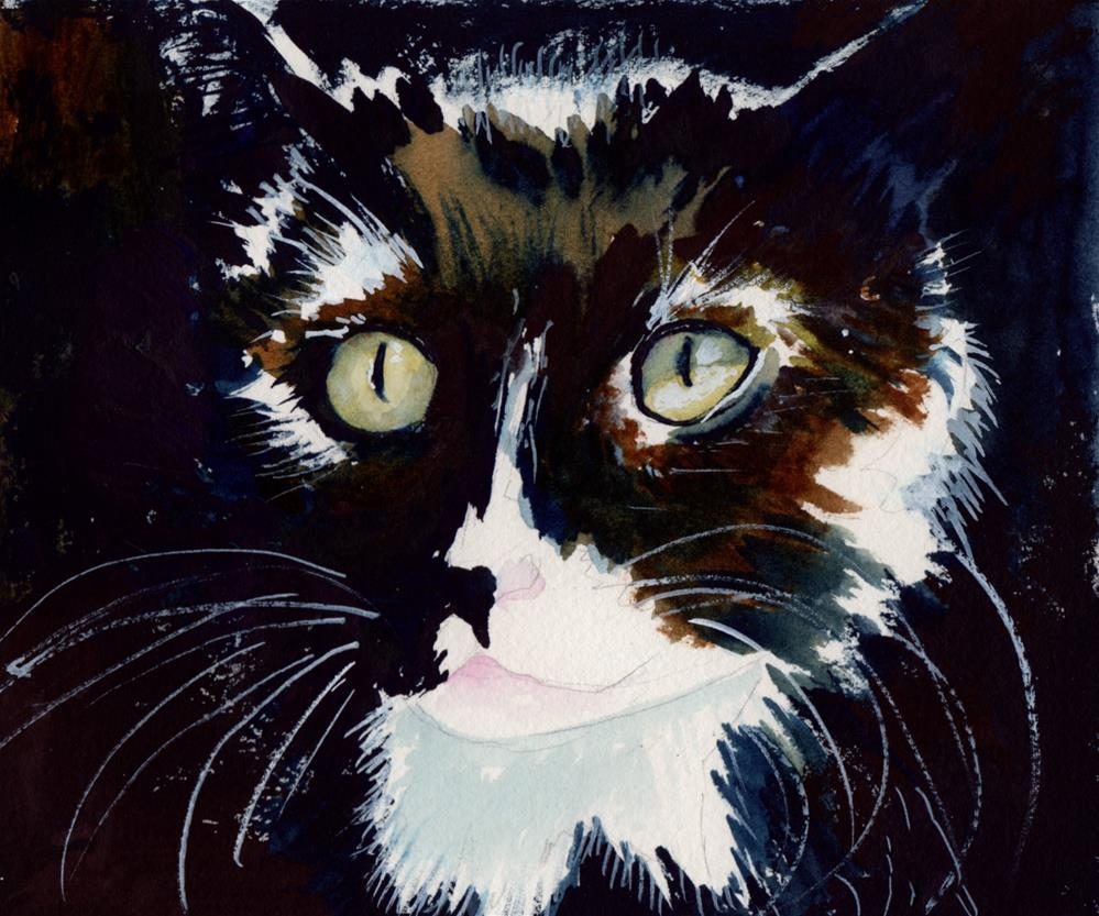 """""""Black and White Cat"""" original fine art by Bunny Griffeth"""