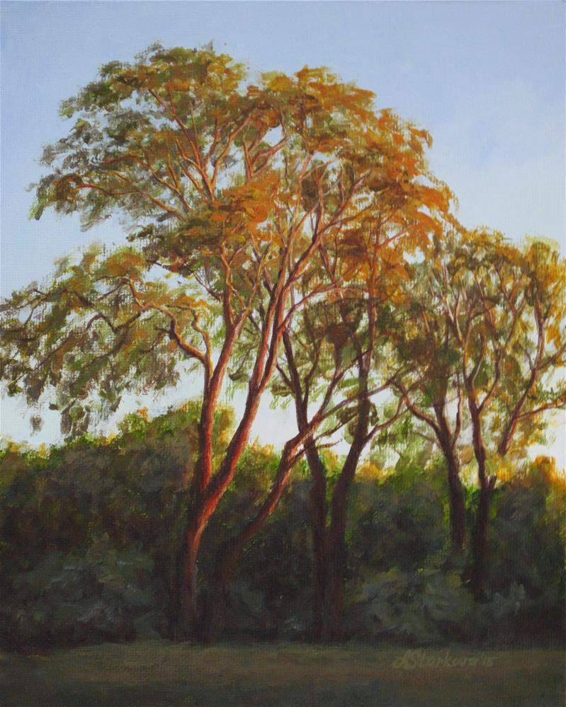 """The light of summer sunset"" original fine art by Anna Starkova"