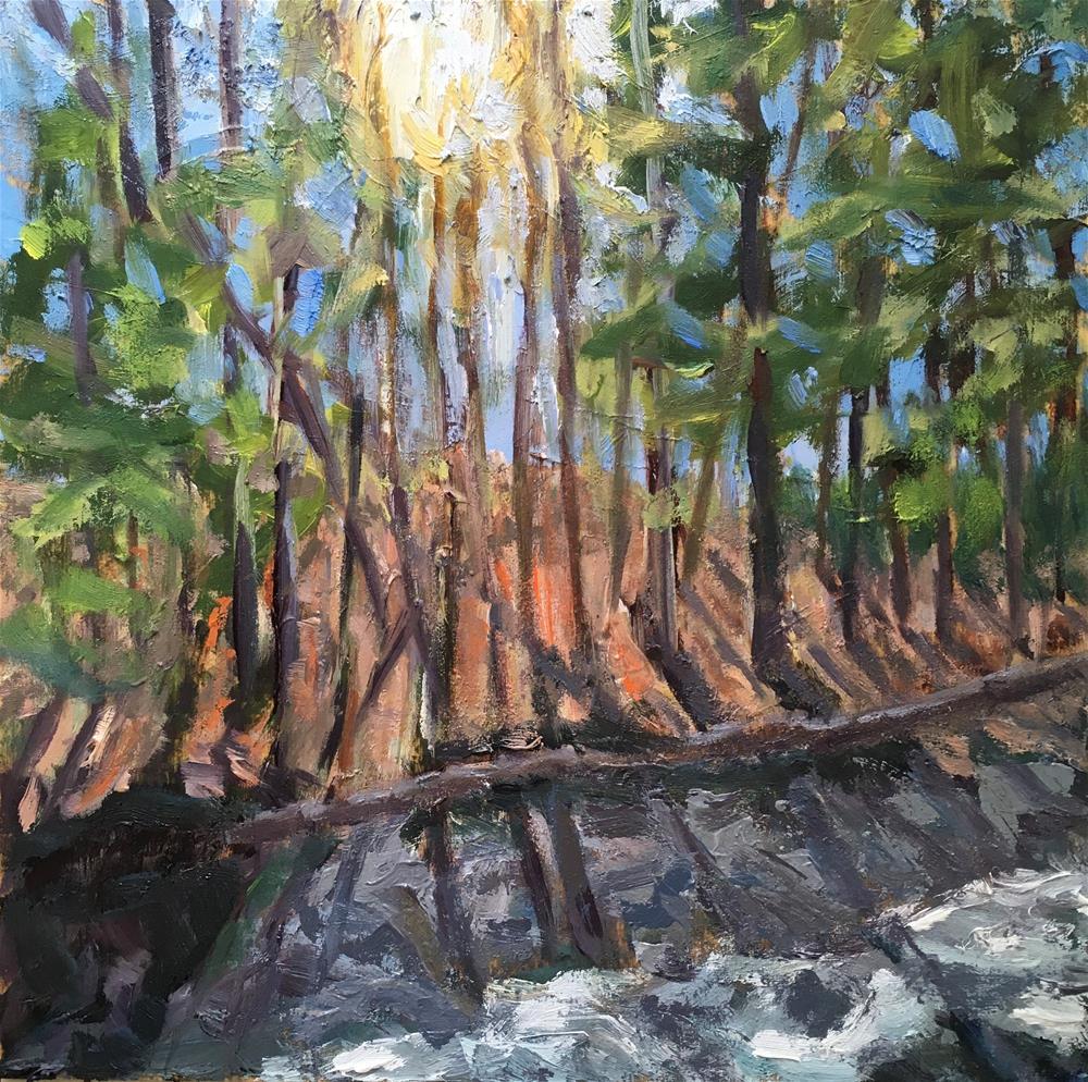 """Spring Runoff"" original fine art by Shari Goddard Shambaugh"