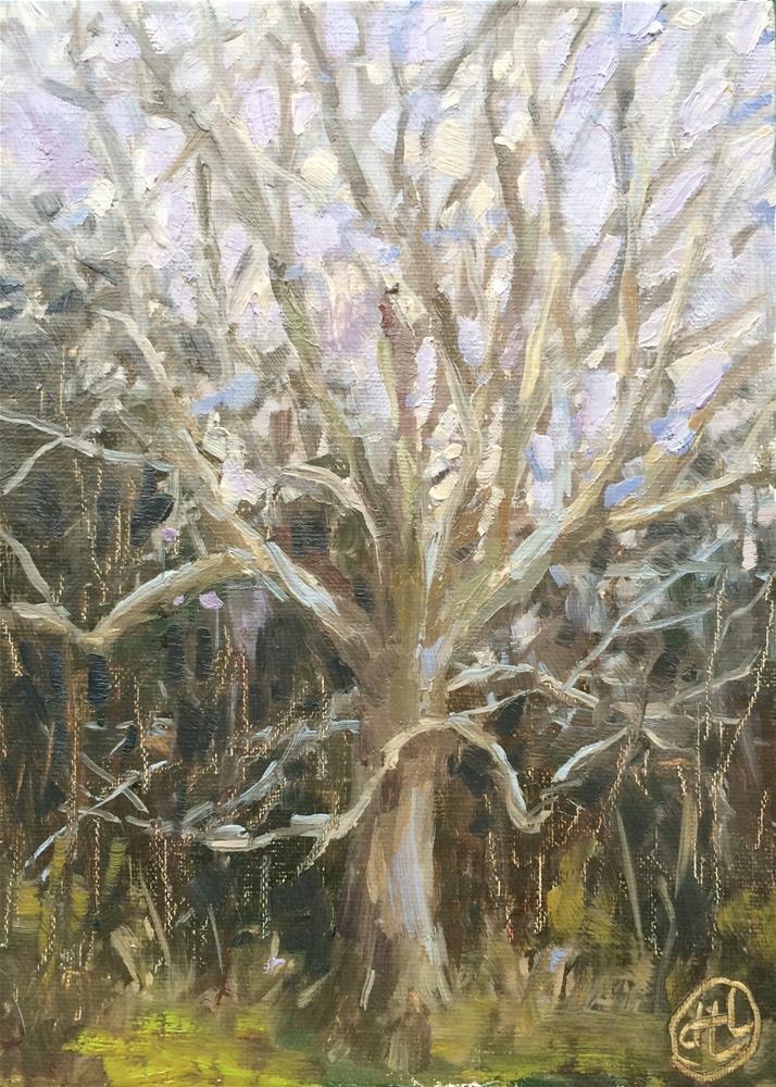 """January afternoon"" original fine art by Dottie  T  Leatherwood"