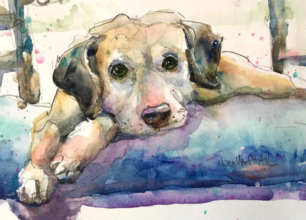 """nap time"" original fine art by Nora MacPhail"