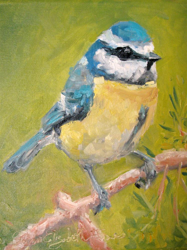 """Blue Titmous"" original fine art by Susan Elizabeth Jones"