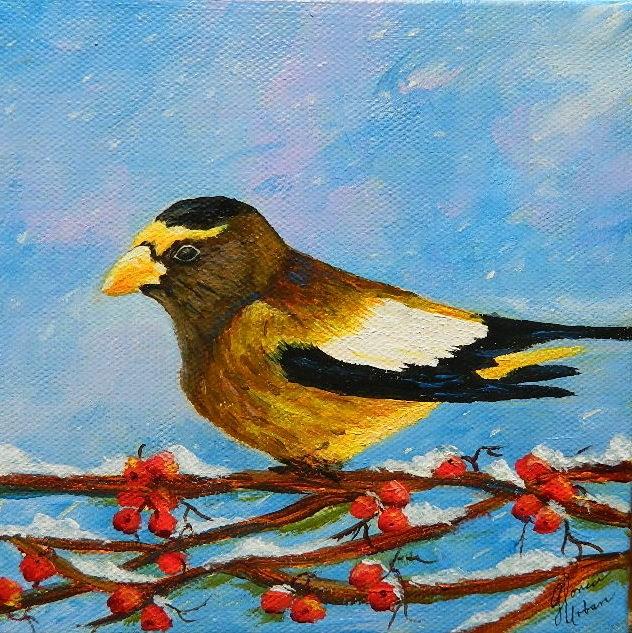 """Yellow Gross Beak"" original fine art by Gloria Urban"