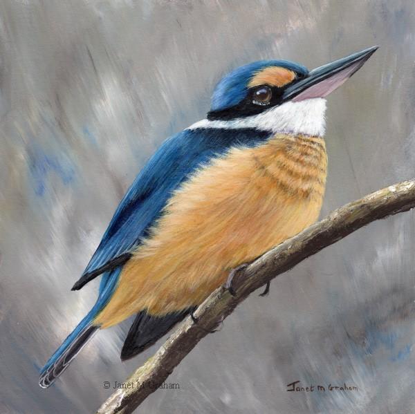 """Sacred Kingfisher No 5"" original fine art by Janet Graham"