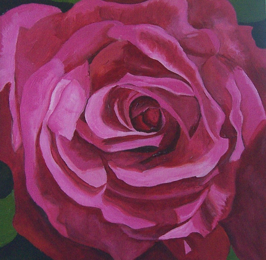 """Pink Rose Study"" original fine art by Lisa Wiertel"