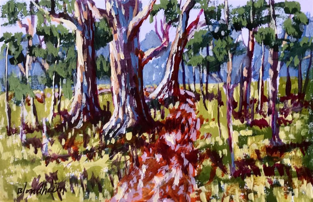 """Trail Path"" original fine art by Linda Blondheim"