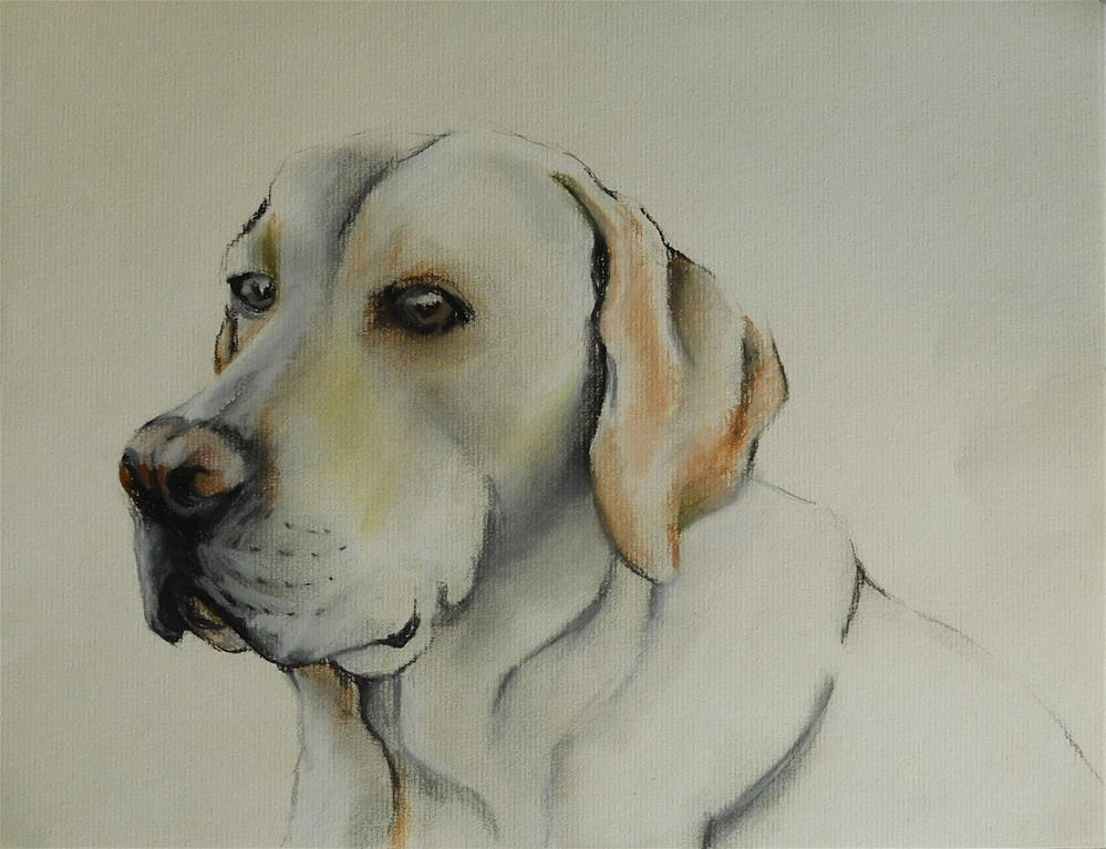 """""""Labrador"""" original fine art by Daryl West"""