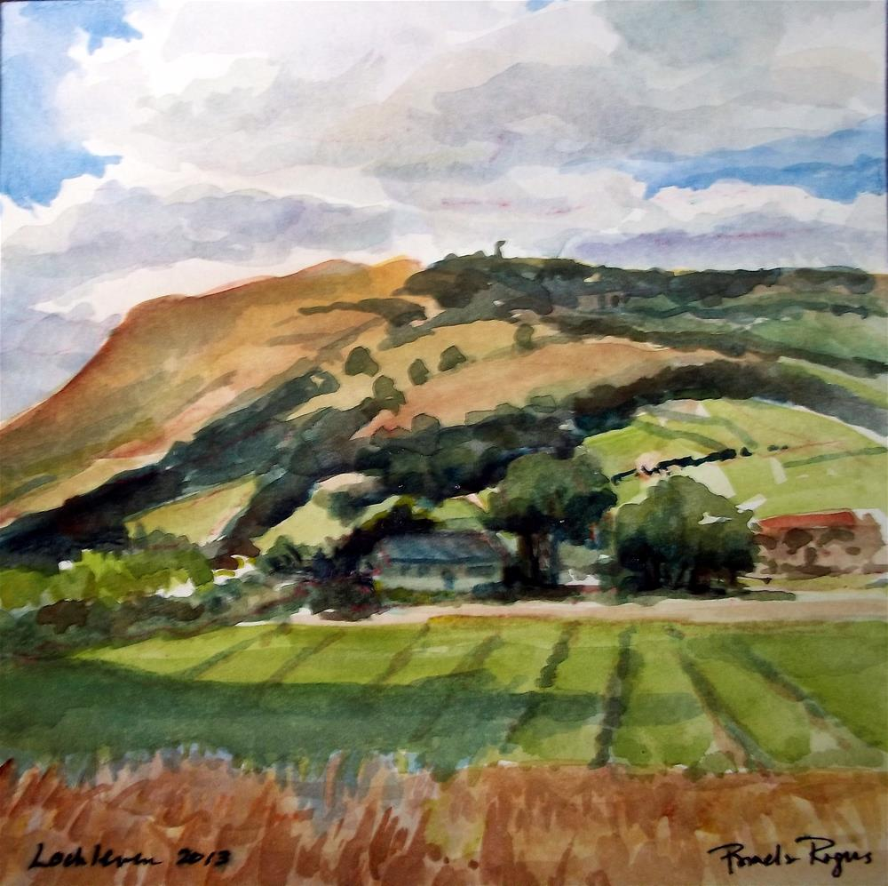 """Lochleven Sunshine!"" original fine art by Pamela Jane Rogers"