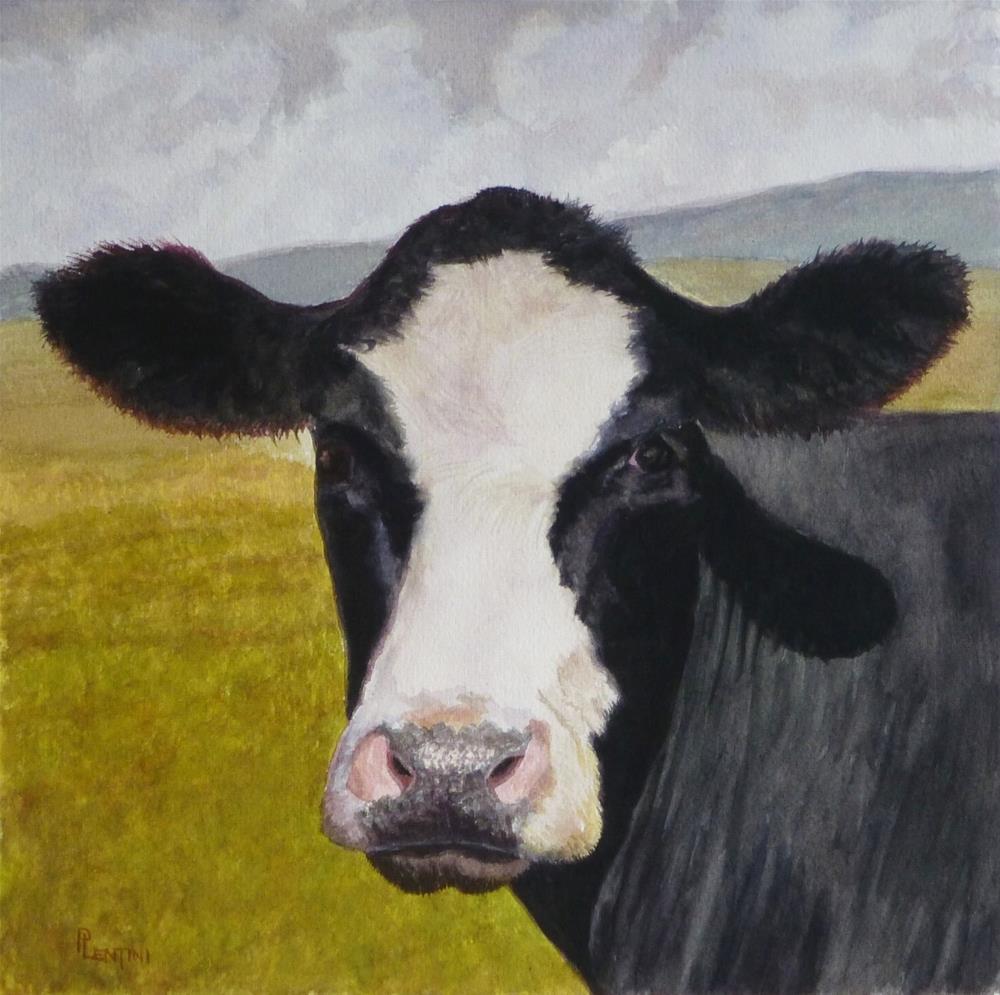 """Cow Series 2: Contemplative"" original fine art by Peter Lentini"