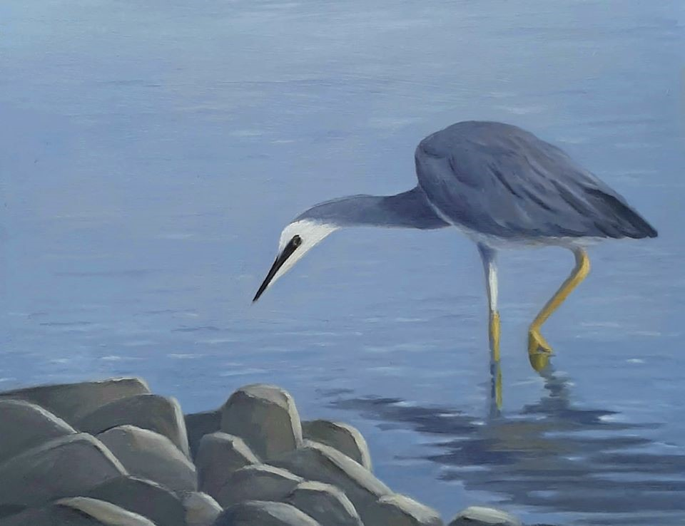 """White Faced Heron"" original fine art by Karen Johnston"