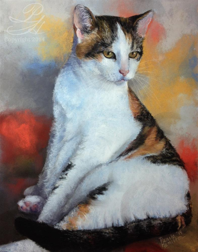 """Calico Cat"" original fine art by Pamela Hamilton"