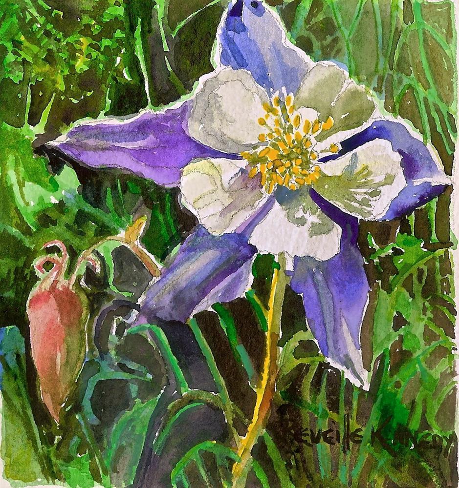 """One Rocky Mountain Columbine"" original fine art by Reveille Kennedy"