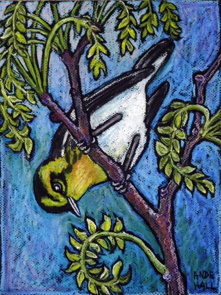 """Blackburnian Warbler"" original fine art by Ande Hall"