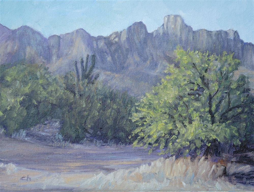 """Path to Catalinas"" original fine art by Candi Hogan"