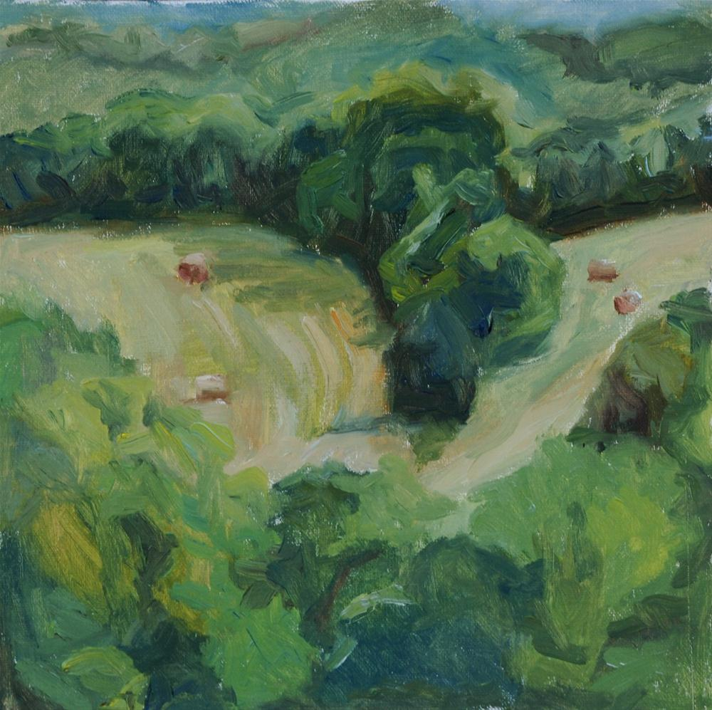 """View from Studio—Spring"" original fine art by Carol DeMumbrum"