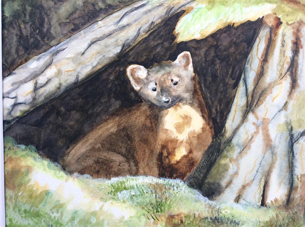 """Pine marten"" original fine art by Jenny Kinberg"