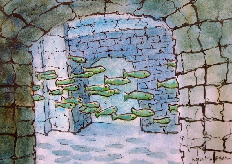 """""""underwater"""" original fine art by Nora MacPhail"""