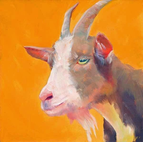 """""""Pink Goatee"""" original fine art by Brenda Ferguson"""
