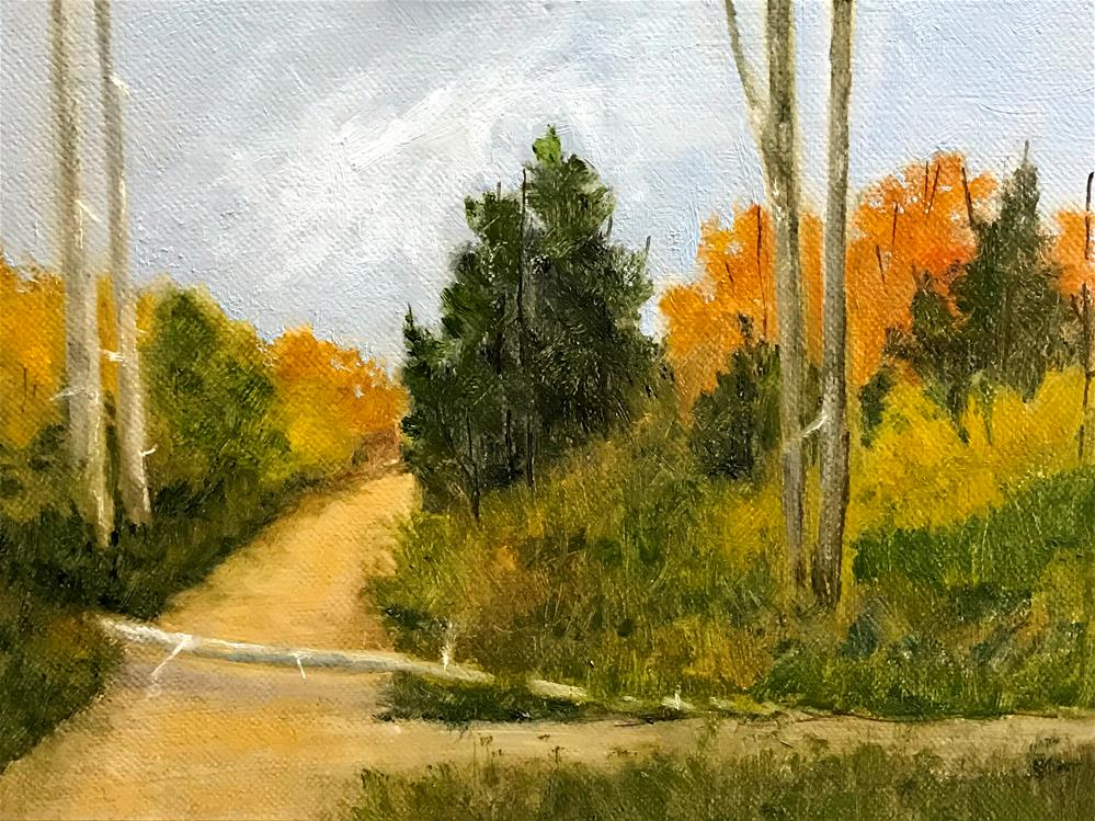 """fallen tree on the path"" original fine art by Betty Argiros"