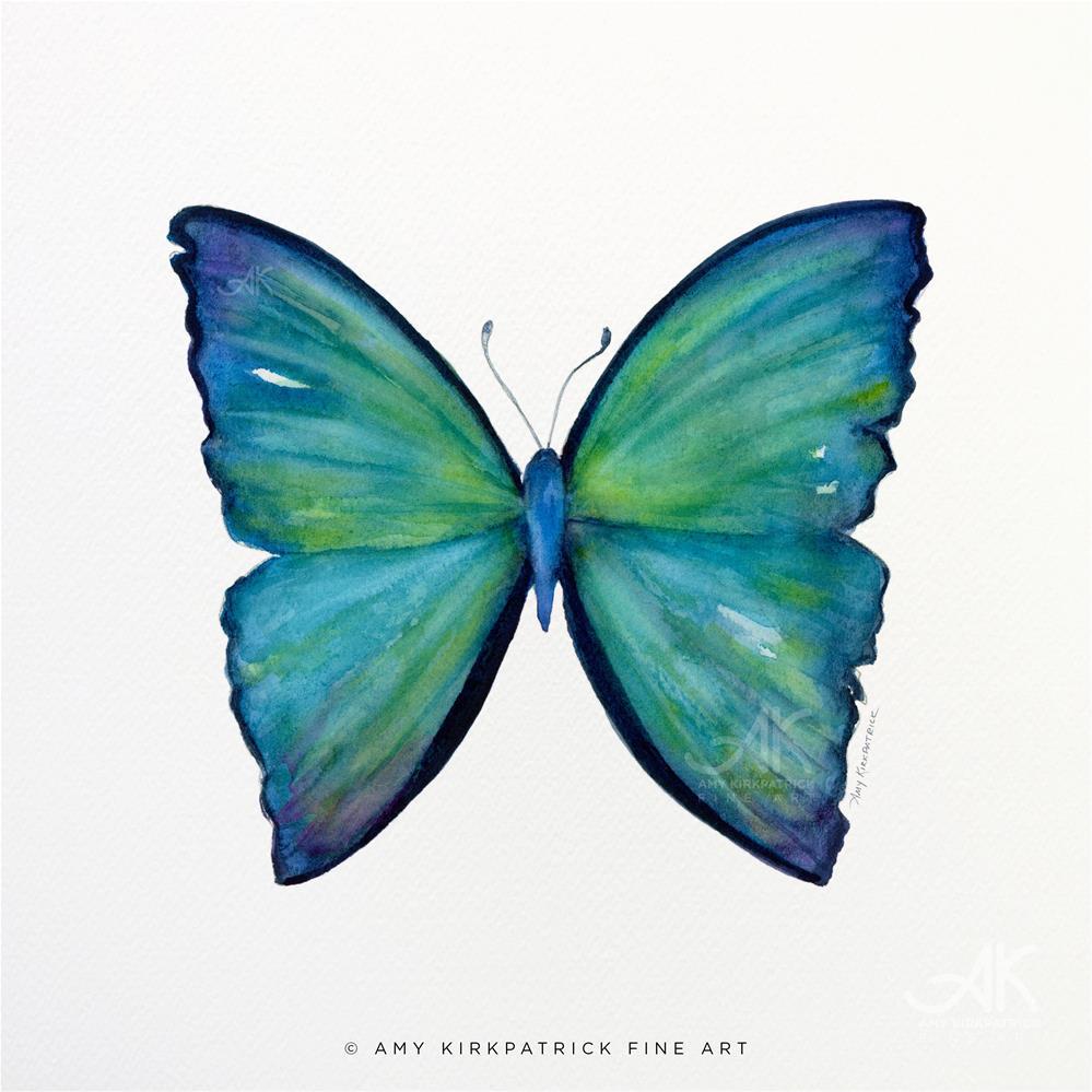 """""""#21 Blue Aega Butterfly #0426"""" original fine art by Amy Kirkpatrick"""