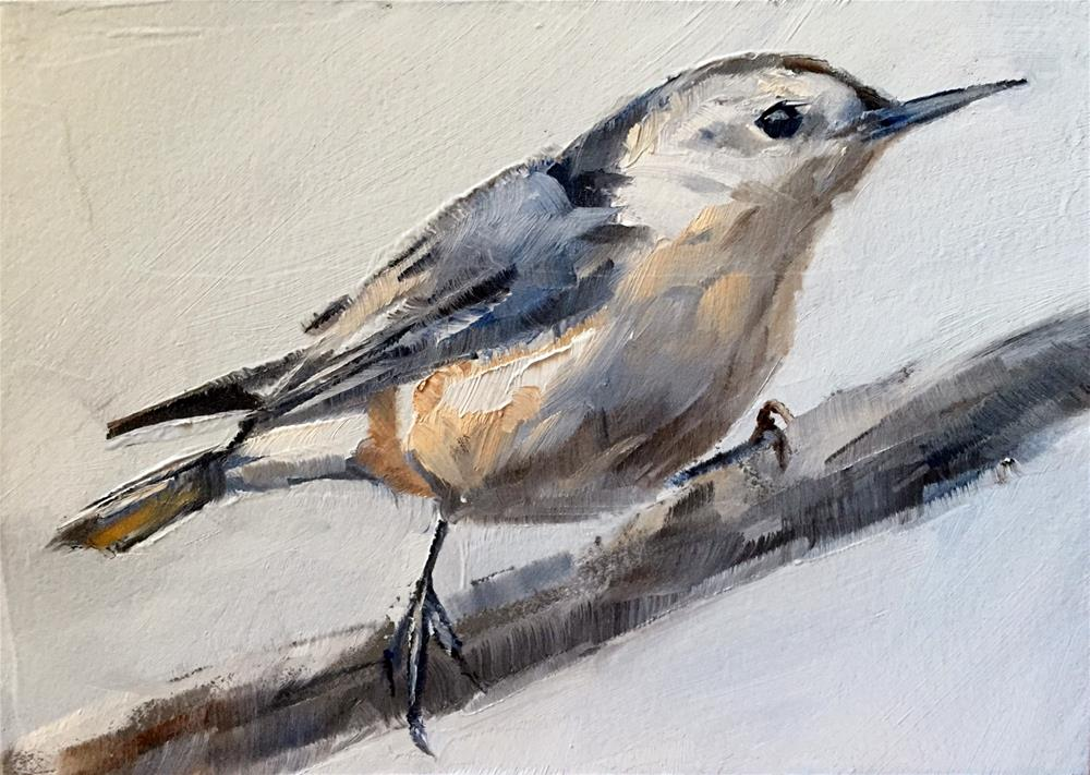 """White Breasted Nuthatch"" original fine art by Gary Bruton"