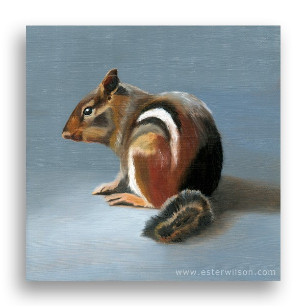 """""""Chipmunk"""" original fine art by Ester Wilson"""