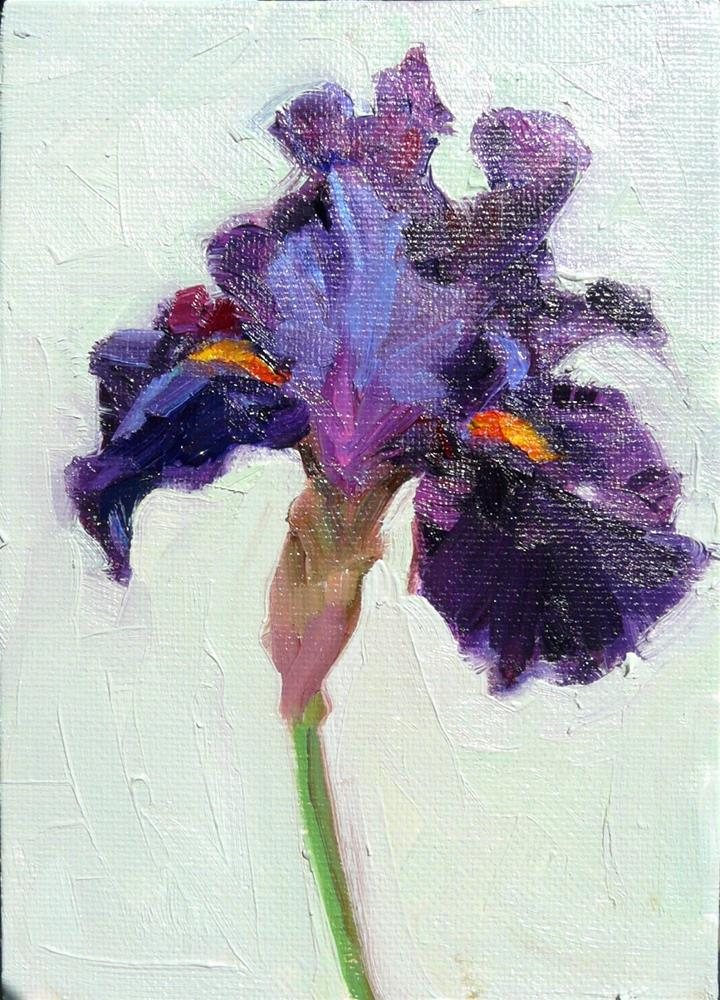"""Dawn's Spicy Iris,still life,oil on canvas,7x5,price$175"" original fine art by Joy Olney"
