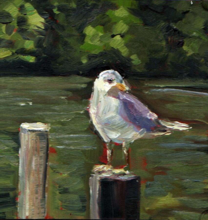 """Lake Gull"" original fine art by Kristen Dukat"