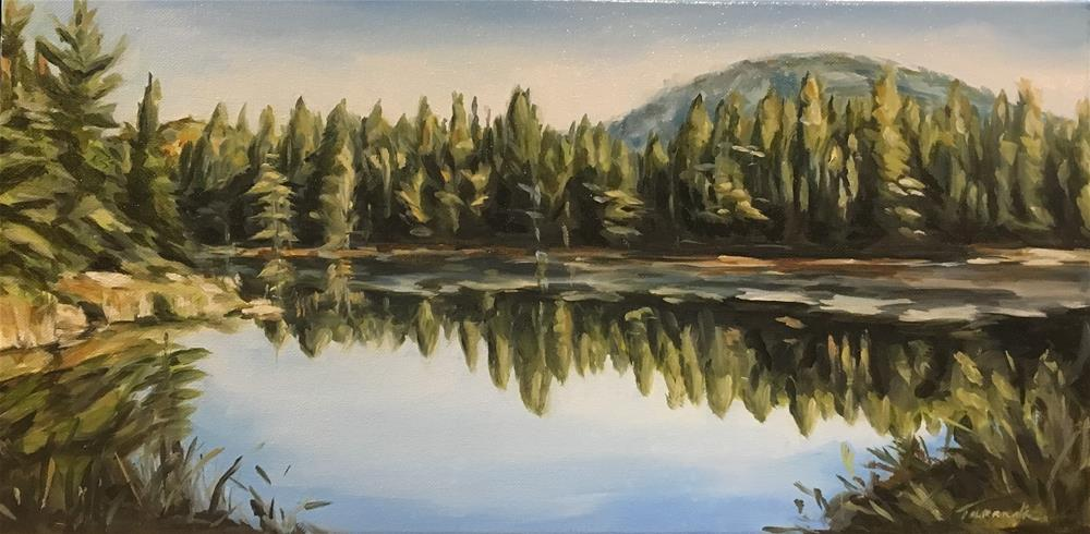 """""""Algonquin Reflections (168)"""" original fine art by Tamanda Elia"""