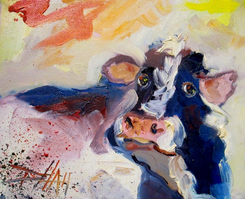"""""""Cow Expressions"""" original fine art by Delilah Smith"""