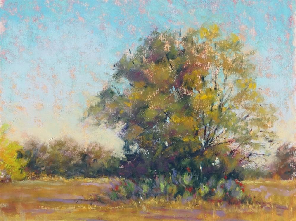 """Autumn Glow"" original fine art by Denise Beard"