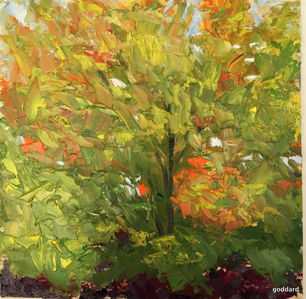 """Maple Tree"" original fine art by Shari Goddard Shambaugh"